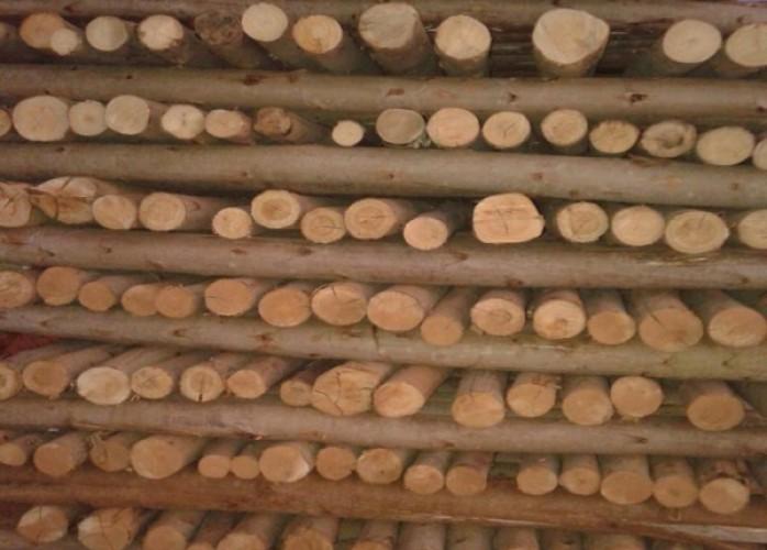 escoramento de madeira 3 metros