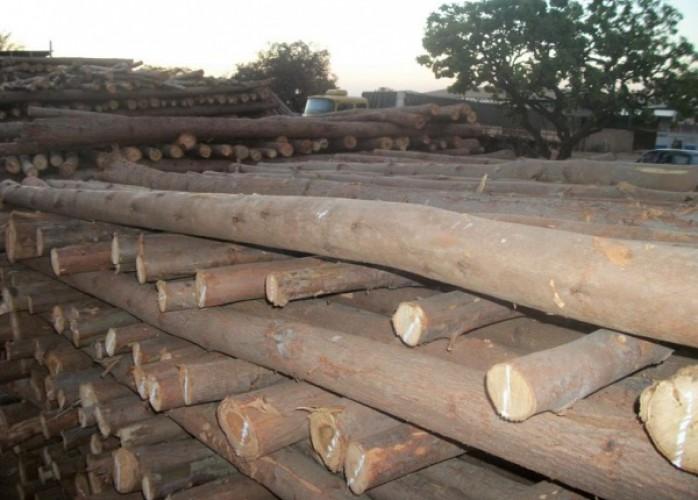 escoras de madeira para laje 4 metros