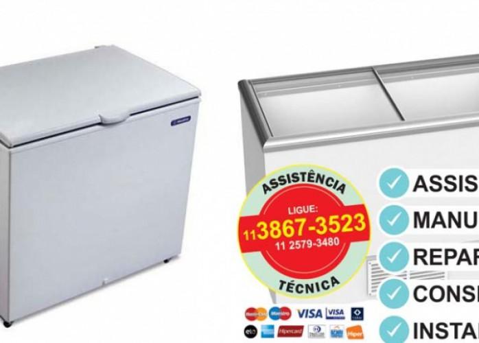 locallfrio assistência técnica freezer