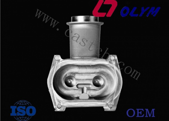which is the professional manufacturer of investment casting ?