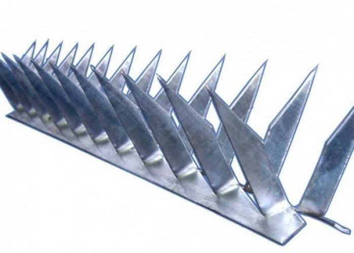 lança cortante concertina