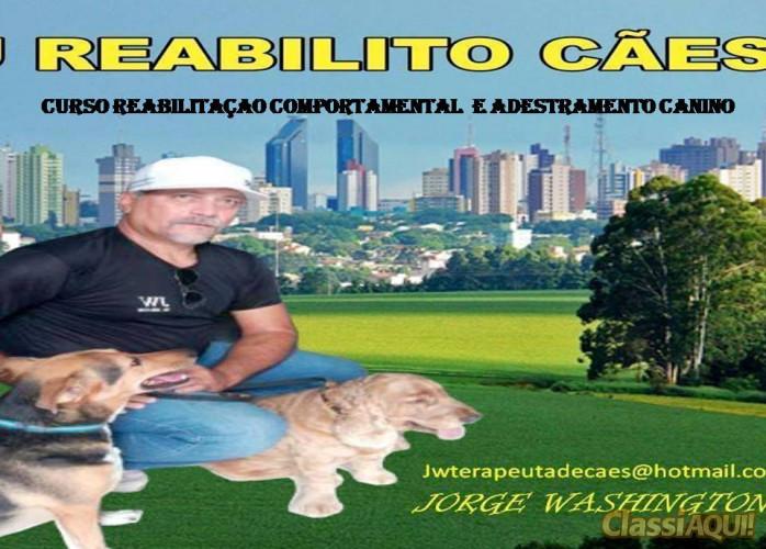 CURSO REABILITAÇÃO COMPORTAMENTAL  E ADESTRAMENTO CANINO