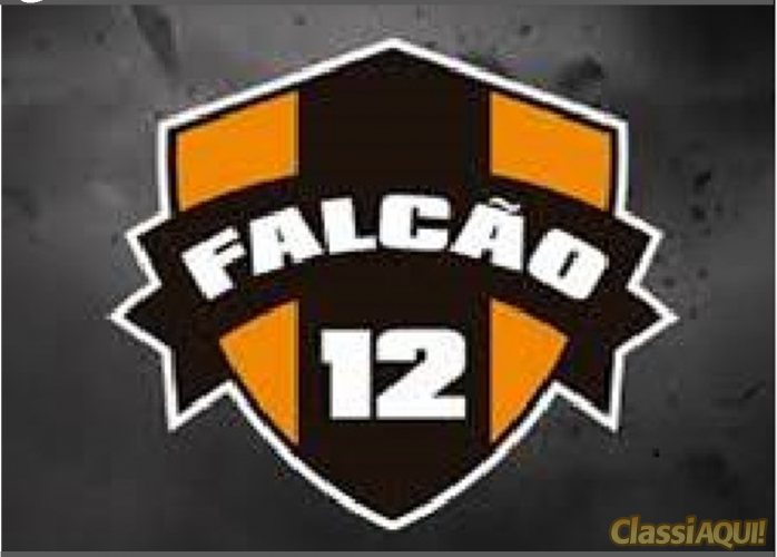 Escolinha de Futebol CT Falcão12 - Vassoler / Santo André SP
