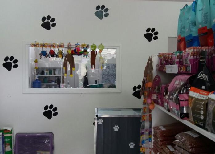 Pet Shop 45 m² em Santo André.