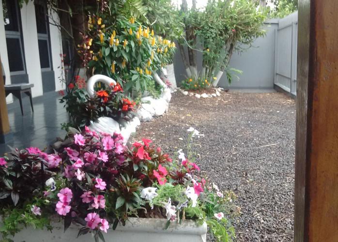 Sanferflora|Arranjo Orquidea e Acessórios, Kasa&jardim, PR, Londrina | classiaqui