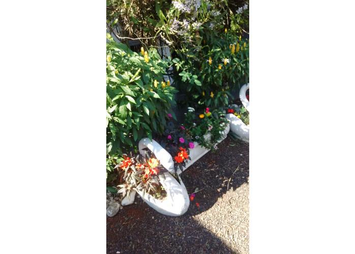 arranjos em palets de orquideas londrina - kaza&jardim