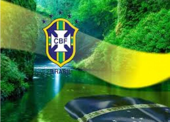 JARDIM&CIA-Serviços de Poda e Corte de Árvores em Londrina, PR - Guia