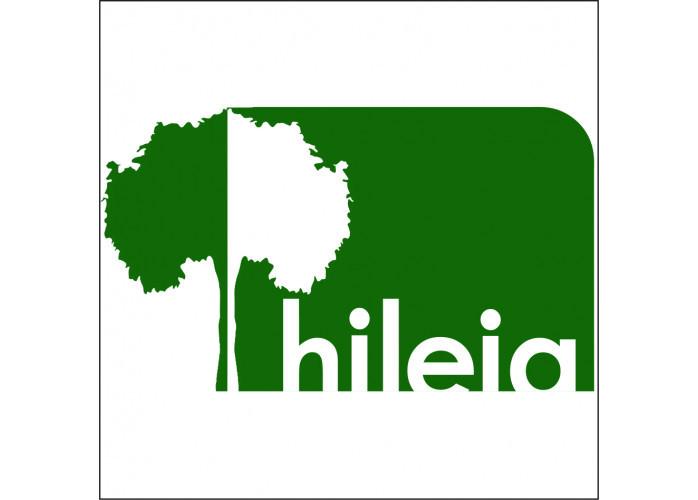 Hileia Consultoria Ambiental