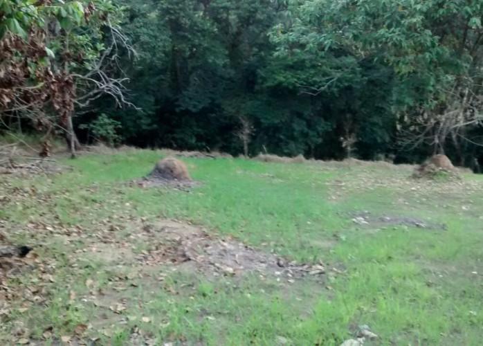 Oportunidade! Lindo lote com bastante área verde. Vendo. Parque Caetê – Bragança Paulista.