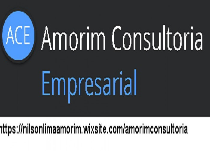 Consultoria administrativa e  Operacional