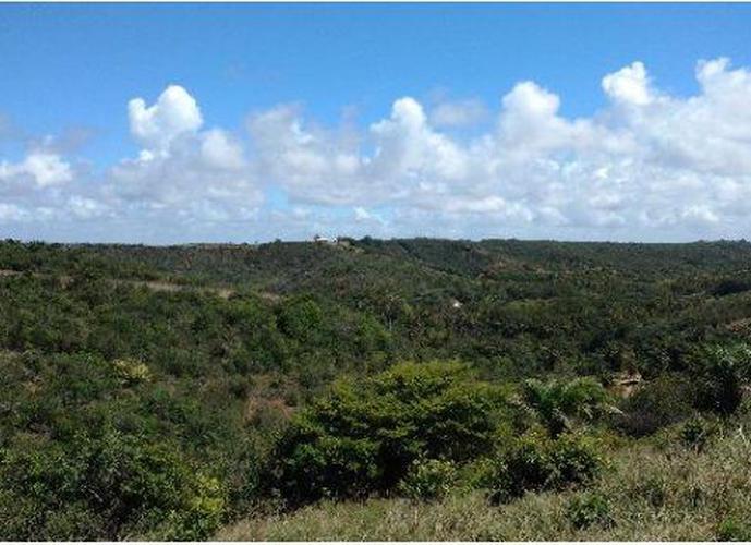 Terreno em Condomínio a Venda no bairro Garça Torta - Maceió, AL - Ref: PA0116