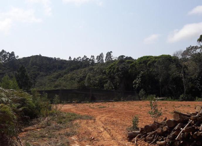 Sítio a Venda no bairro Vargem Grande - Águas Mornas, SC - Ref: ST025
