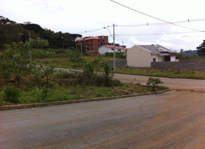 Venetto III - Terreno a Venda no bairro São Luiz 6 Légua - Caxias do Sul, RS - Ref: WI57