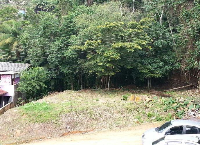 Terreno - Terreno a Venda no bairro Tribess - Blumenau, SC - Ref: IM35627