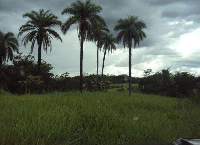 Fazenda Santa Rita 436 HA em São Gonçalo do Abaeté - Fazenda a Venda no bairro Zona Rural - São Gonçalo Do Abaeté, MG - Ref: LI30170