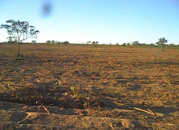 Fazenda a venda em Bonito de Minas - Fazenda a Venda no bairro Zona Rural - Bonito De Minas, MG - Ref: LI90613