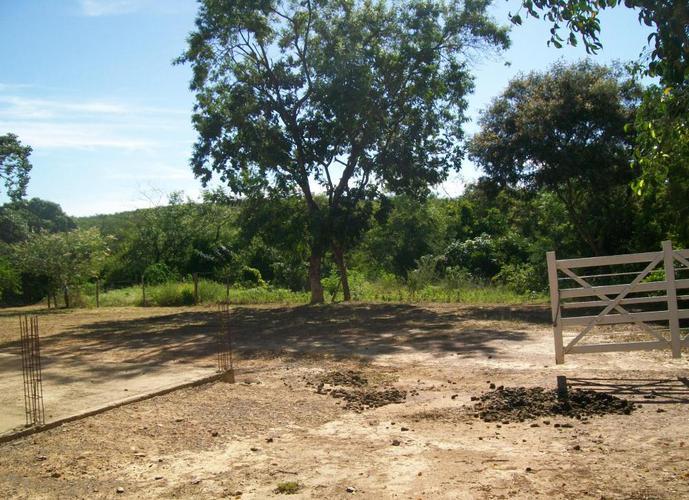Sitio no Balneário Bico da Pedra - Sítio a Venda no bairro Poção de Santa Cruz - Janaúba, MG - Ref: LI85479