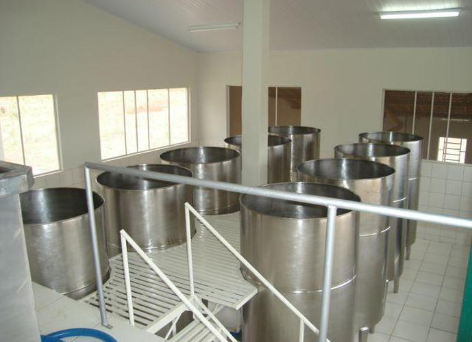 Fazenda com Fábrica de Cachaça - Fazenda a Venda no bairro Zona Rural - Salinas, MG - Ref: LI30023