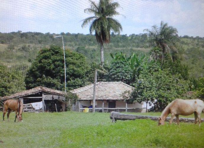 Fazenda 131 ha em Santa Fé de Minas - Fazenda a Venda no bairro Areal - Santa Fé de Minas, MG - Ref: LI80573
