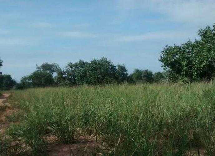 Fazenda em Joao Pinheiro MG - Fazenda a Venda no bairro Zona Rural - Joao Pinheiro, MG - Ref: LI74286