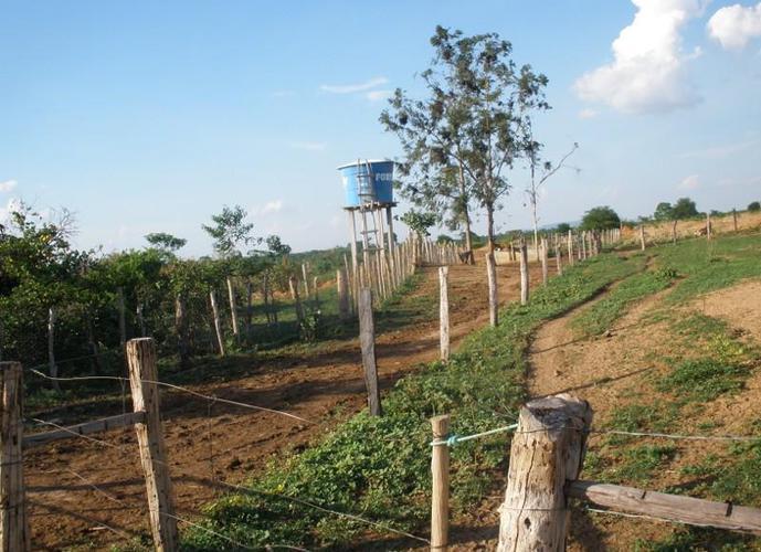 Fazenda 60 ha em Janaúba - Fazenda a Venda no bairro Zona Rural - Janaúba, MG - Ref: SL96465