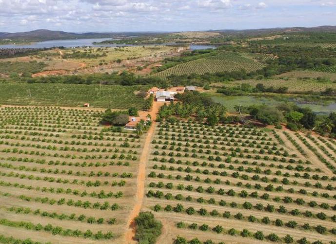 Fazenda Irrigada - Fazenda a Venda no bairro Zona Rural - Anagé, BA - Ref: SL30597