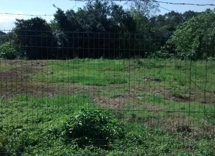Terreno - Terreno a Venda no bairro Conservas - Lajeado, RS - Ref: 280