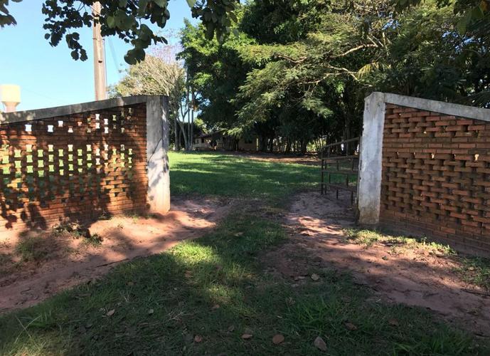 Fazenda a Venda no bairro Centro - Bauru, SP - Ref: RB7000