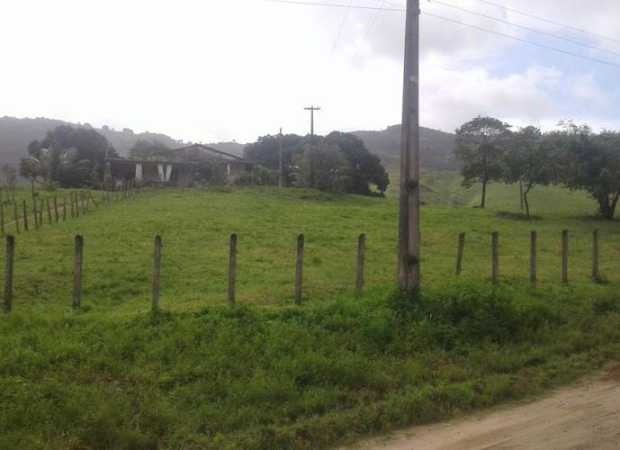 Fazenda com 574 héctares - Fazenda a Venda no bairro Área Rural - União dos Palmares, AL - Ref: PL001