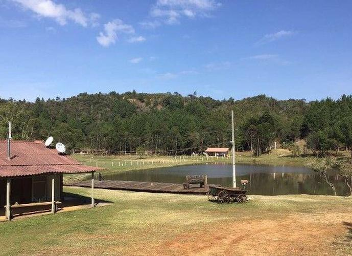 Chácara a Venda no bairro Zona Rural - Tijucas Do Sul, PR - Ref: LU1778
