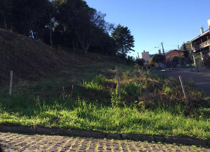 TERRENO COLINA SORRISO - Terreno a Venda no bairro Colina Sorriso - Caxias do Sul, RS - Ref: PA-124