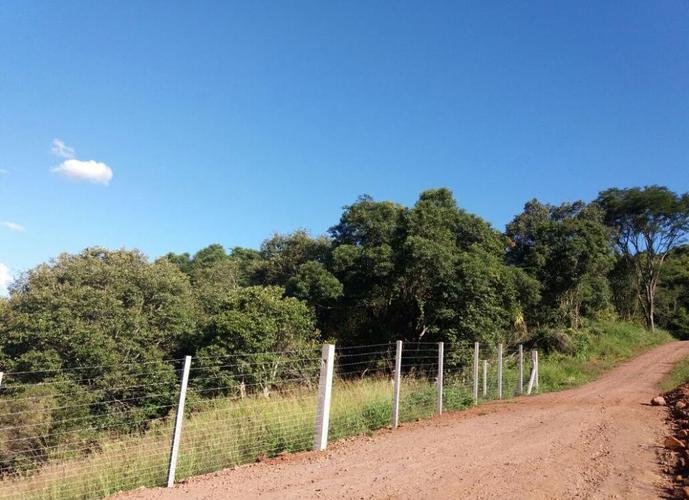 Sítio a Venda no bairro Água Branca - Francisco Beltrão, PR - Ref: O52360