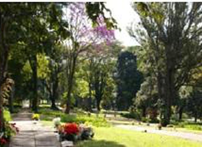 Jazigo 6 gavetas no Cemitério da Paz - Lote a Venda no bairro Jardim Morumbi - São Paulo, SP - Ref: HA206