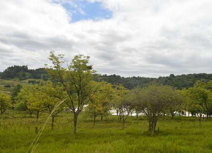 CHÁCARA FAZENDA SOUZA - Chácara a Venda no bairro Fazenda Souza - Caxias do Sul, RS - Ref: PA017
