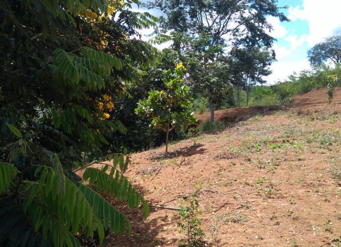 Chácara a Venda no bairro Zona Rural - Sabinópolis, MG - Ref: MSI-0018