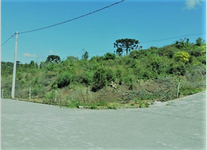Terreno de esquina ( permuta) - Terreno a Venda no bairro São Luiz - Caxias do Sul, RS - Ref: 3S57080