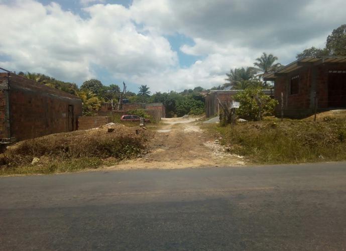 Terreno em Amoreiras - Terreno a Venda no bairro Amoreiras - Itaparica, BA - Ref: IMO31031
