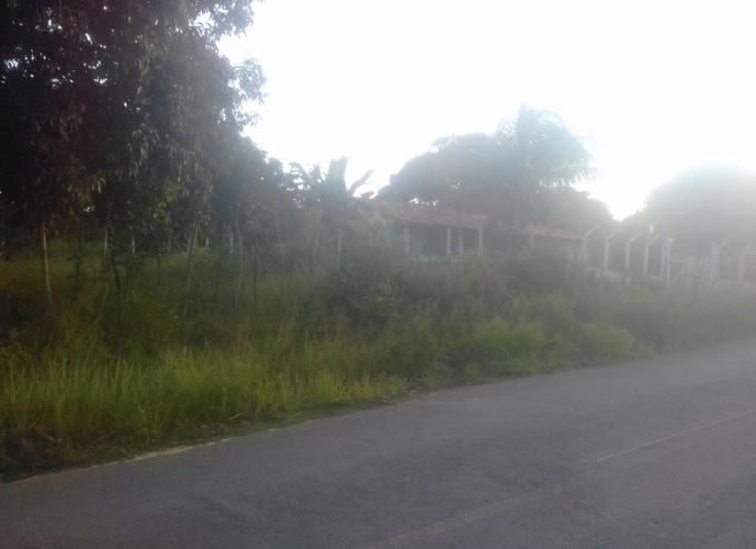 Área de Terreno de 5.950 m² na avenida Beira Mar - Área a Venda no bairro Amoreiras - Itaparica, BA - Ref: IMO13287