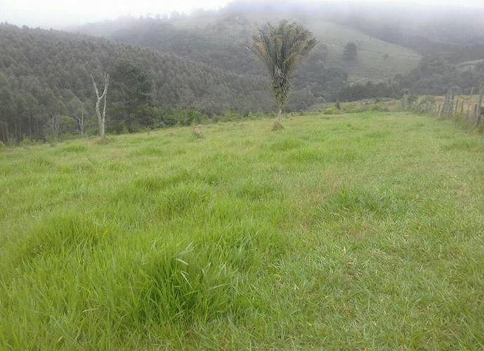 Sítio em Abaitinga/SP de 108900m² 3 quartos a venda por R$ 480.000,00