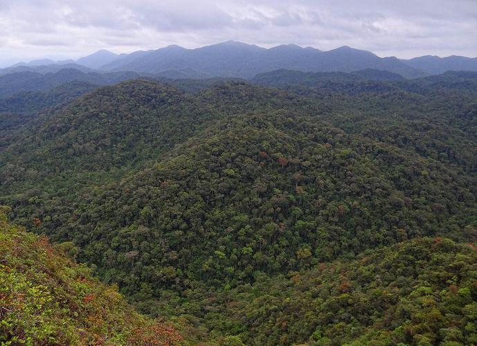 Fazenda em Zona Rural/SP de 413820m² a venda por R$ 650.000,00