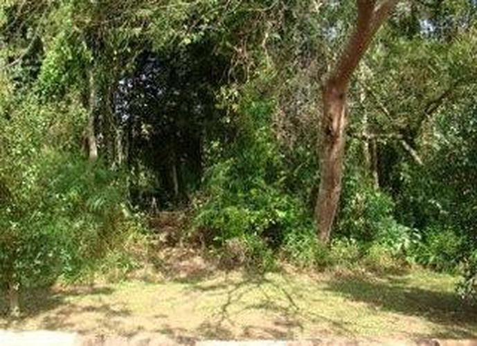 Terreno em Jardim San Ressore (Caucaia Do Alto)/SP de 800m² a venda por R$ 200.000,00