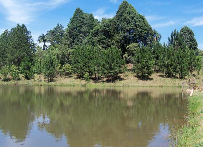 Terreno em Jardim San Ressore (Caucaia Do Alto)/SP de 1379m² a venda por R$ 275.000,00