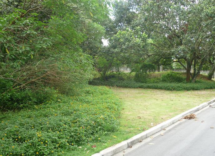 Terreno em Granja Viana/SP de 2518m² a venda por R$ 1.000.000,00