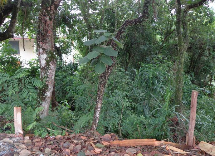 Terreno em Granja Viana/SP de 1145m² a venda por R$ 350.000,00