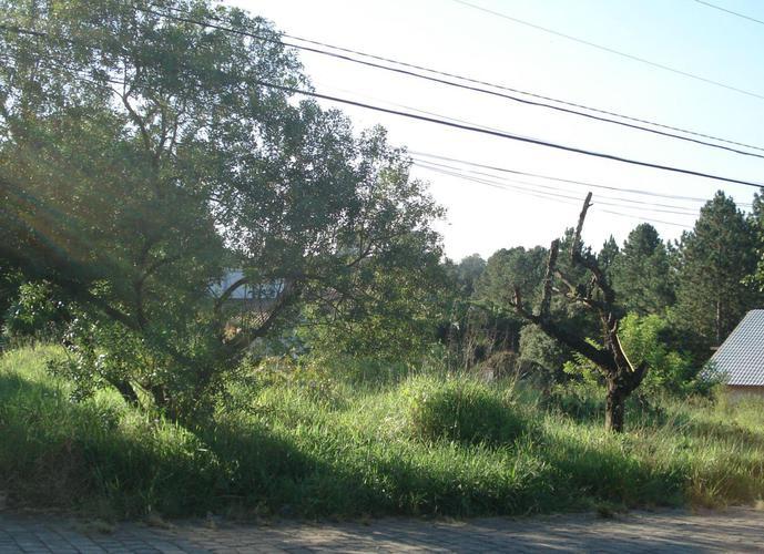 Terreno em Granja Viana/SP de 689m² a venda por R$ 350.000,00