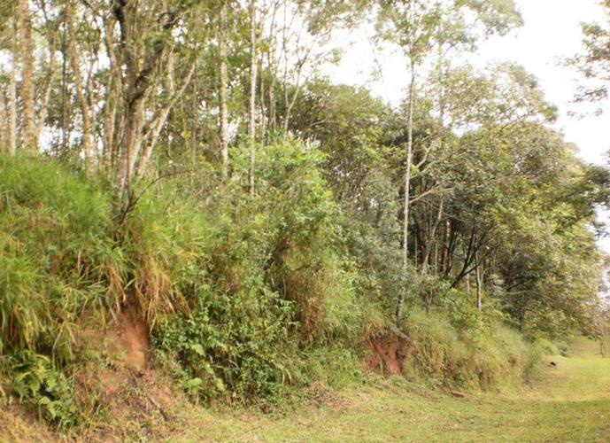 Terreno em Granja Viana/SP de 2819m² a venda por R$ 265.000,00