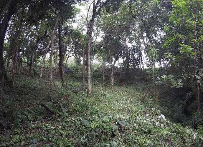 Terreno em Granja Viana/SP de 799m² a venda por R$ 180.000,00