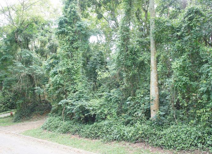 Terreno em Vila Verde/SP de 711m² a venda por R$ 260.000,00