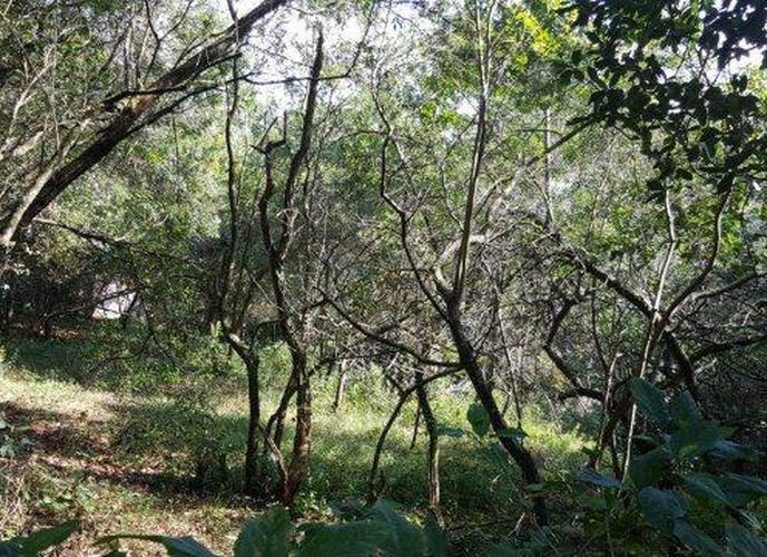 Terreno em Granja Viana/SP de 2845m² a venda por R$ 1.200.000,00
