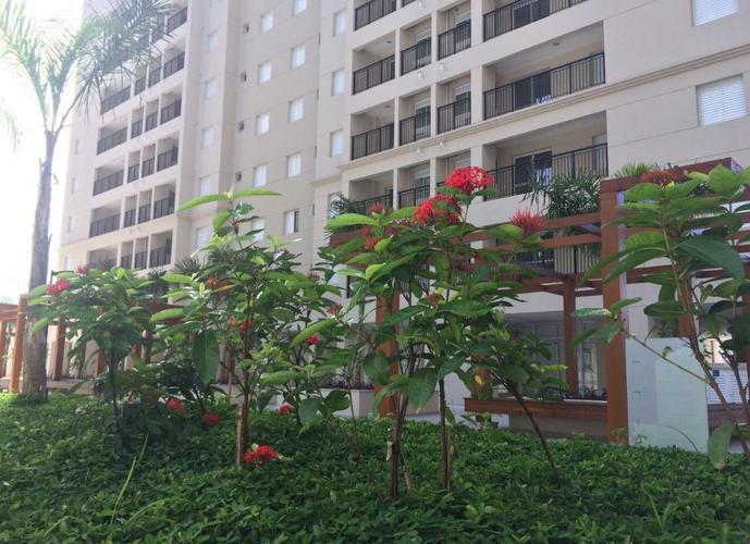 Apartamento em Marapé/SP de 63m² 2 quartos a venda por R$ 320.000,00